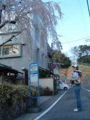 Odawara04