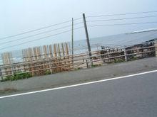 Chiba1405